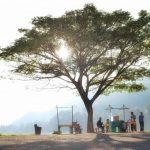 Kampung Halaman, Bendung Gerak Serayu